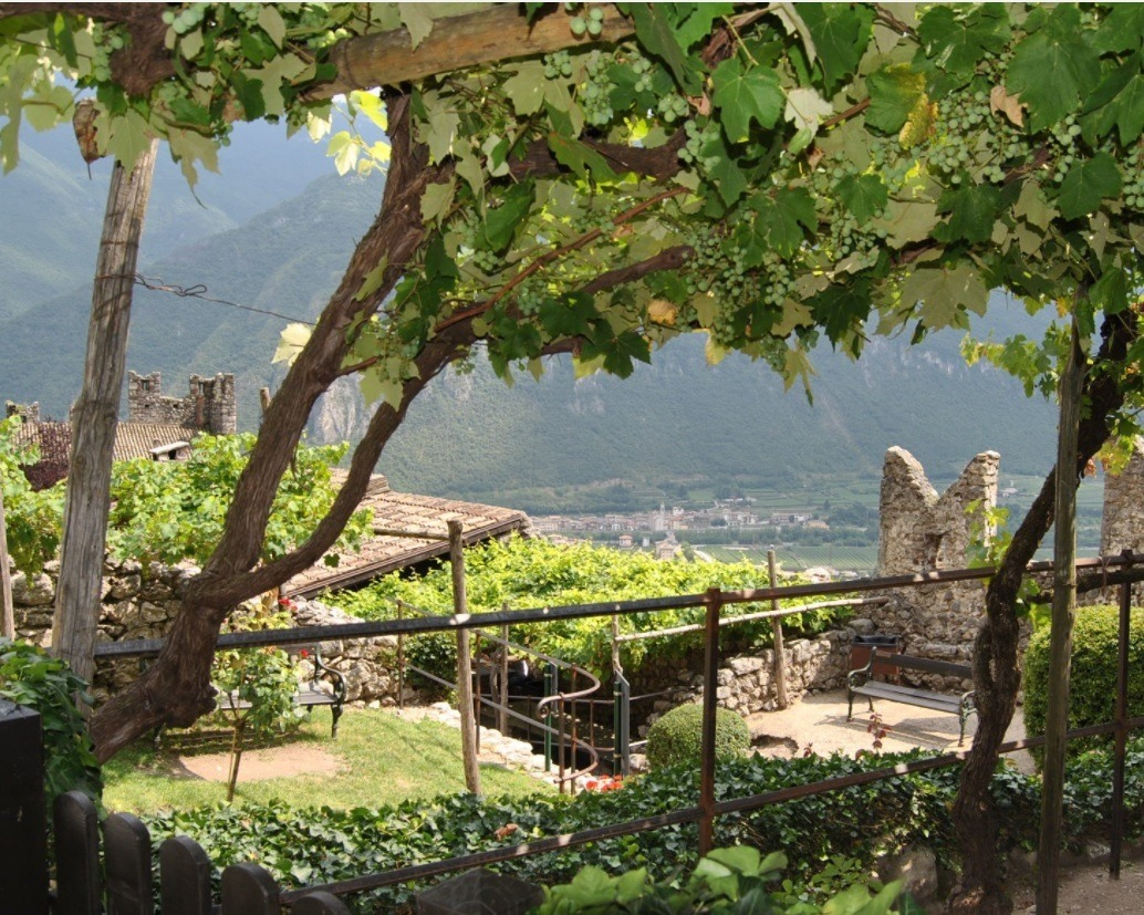 6 Immagine INTERNO CASTELLO
